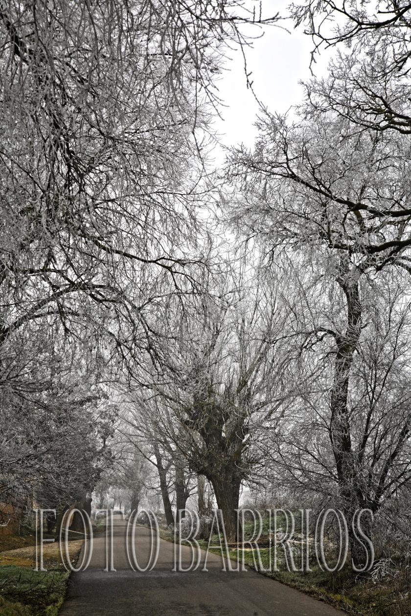 entrada invierno 01