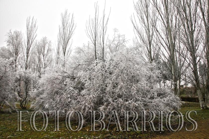 entrada invierno 03
