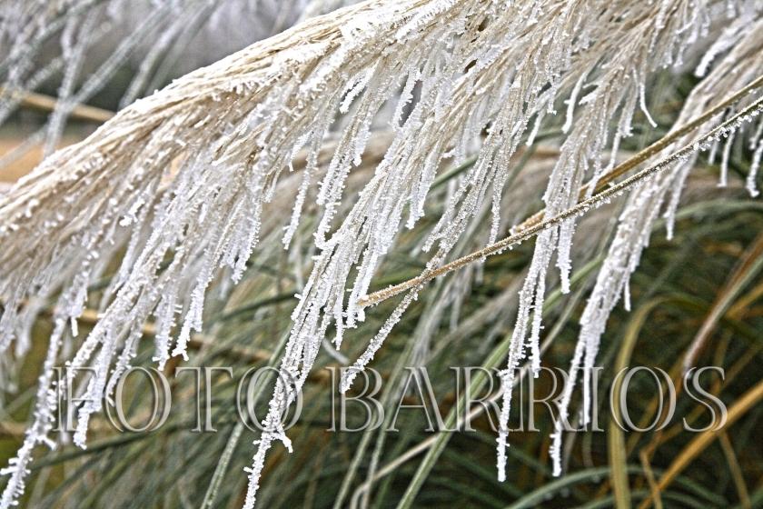 entrada invierno 06