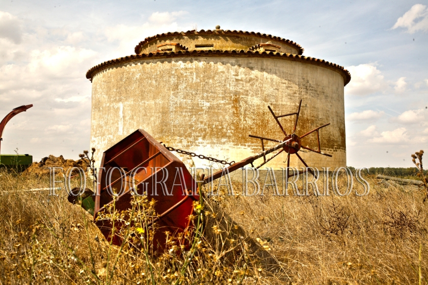 fotopalomar Tierra de Campos