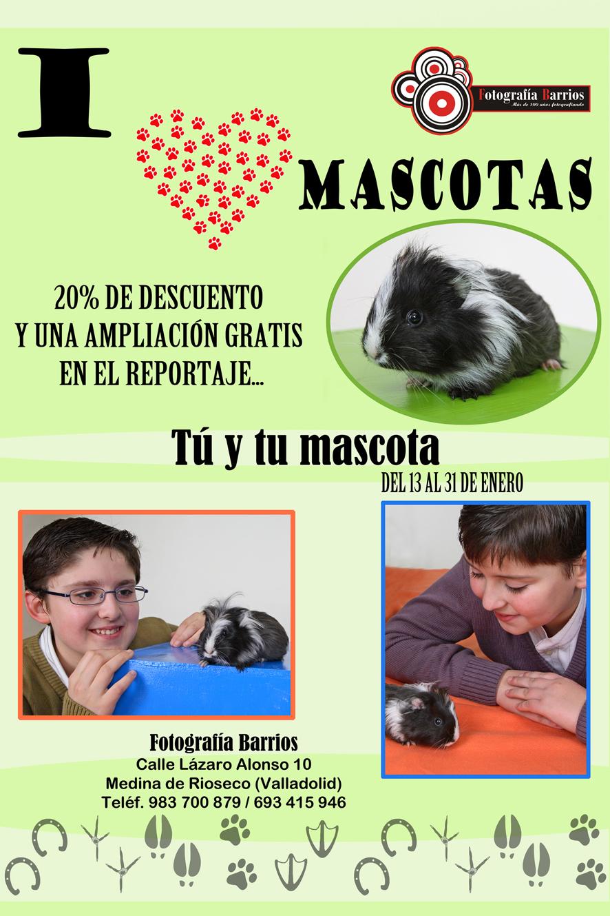 promoción mascotas
