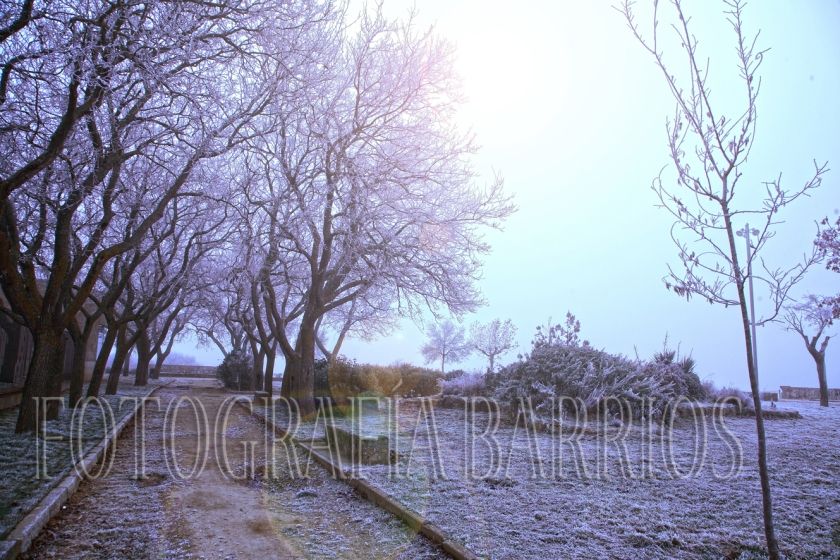 inviernoenfotografías