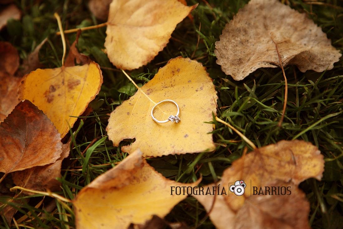 fotos_otoño