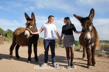 fotografías prenovios con burros