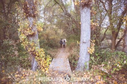 Preboda otoño 7